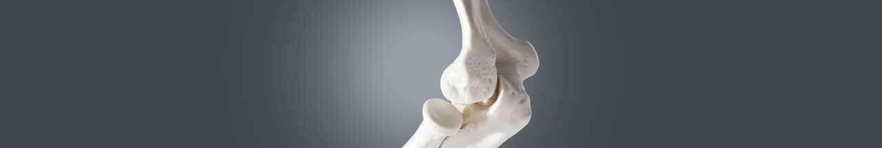 bone cancer treatment, bone cancer treatment in india, bone cancer surgery in india, bone cancer treatment cost in india